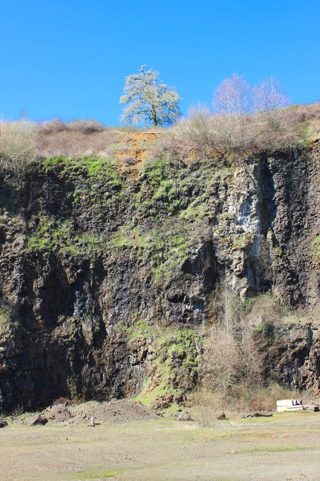 The quarry at J Wrigley